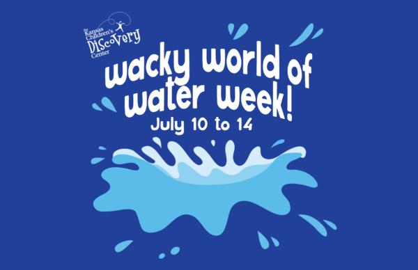 Water Rocket @ Kansas Children's Discovery Center | Topeka | Kansas | United States