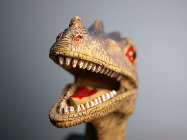Dino Day @ Kansas Children's Discovery Center